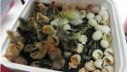 trứng gà nở bằng máy ấp trứng mini btx-42