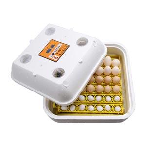 máy ấp trứng mini btx-42
